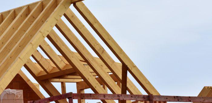 Тенденции развития деревянного строительства обсудили специалисты на конференции в Новосибирске